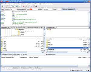 вход по FTP на sarhosting